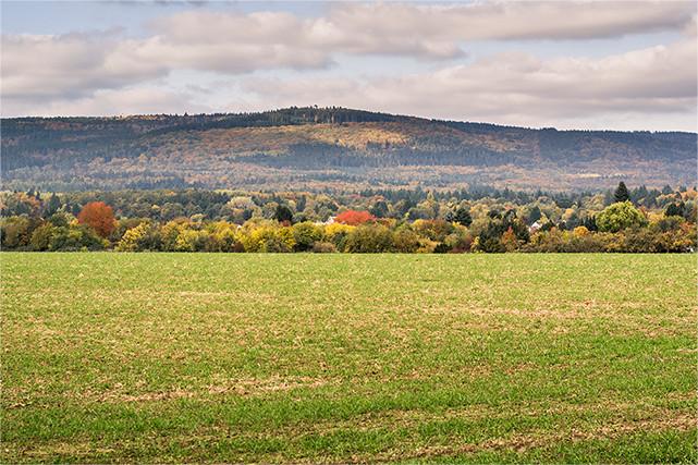 Blick vom Oberstedter Feld auf den Herzberg