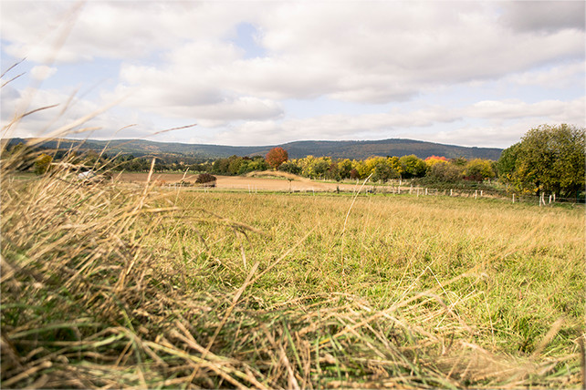 Landwirtschaftlich genutzte Ackerfläche am Ortsrand von Oberstedten